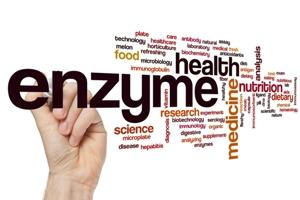 Wertvolle Enzyme ! Quelle: shutterstock