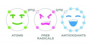 Freie Radikale - Quelle: Adobe Stock